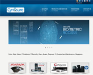 Cynosure Systems